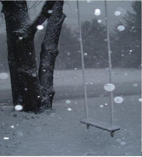 Φωτογραφία: Κωνσταντίνος Λιάκος, 15/12/2011